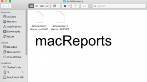 AutoRecover files