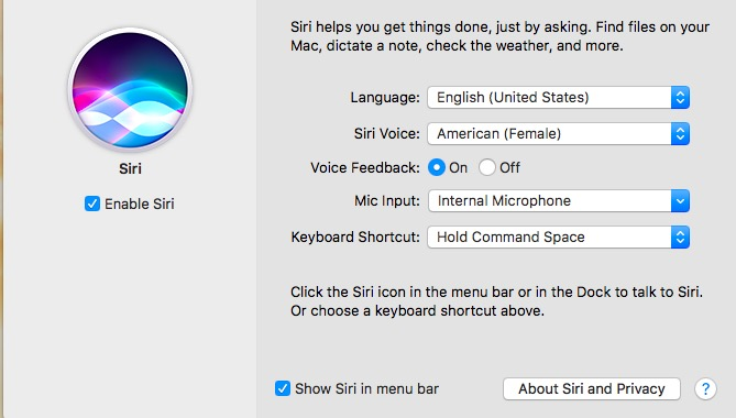 macOS Siri Settings