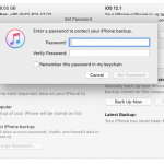 iTunes Backup password setting