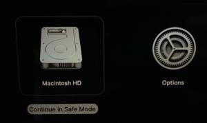 Apple M Silicon Macs