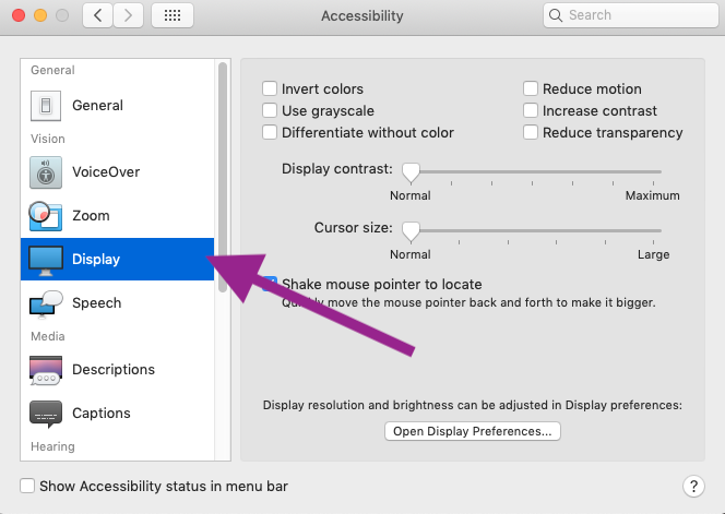accessibility display features
