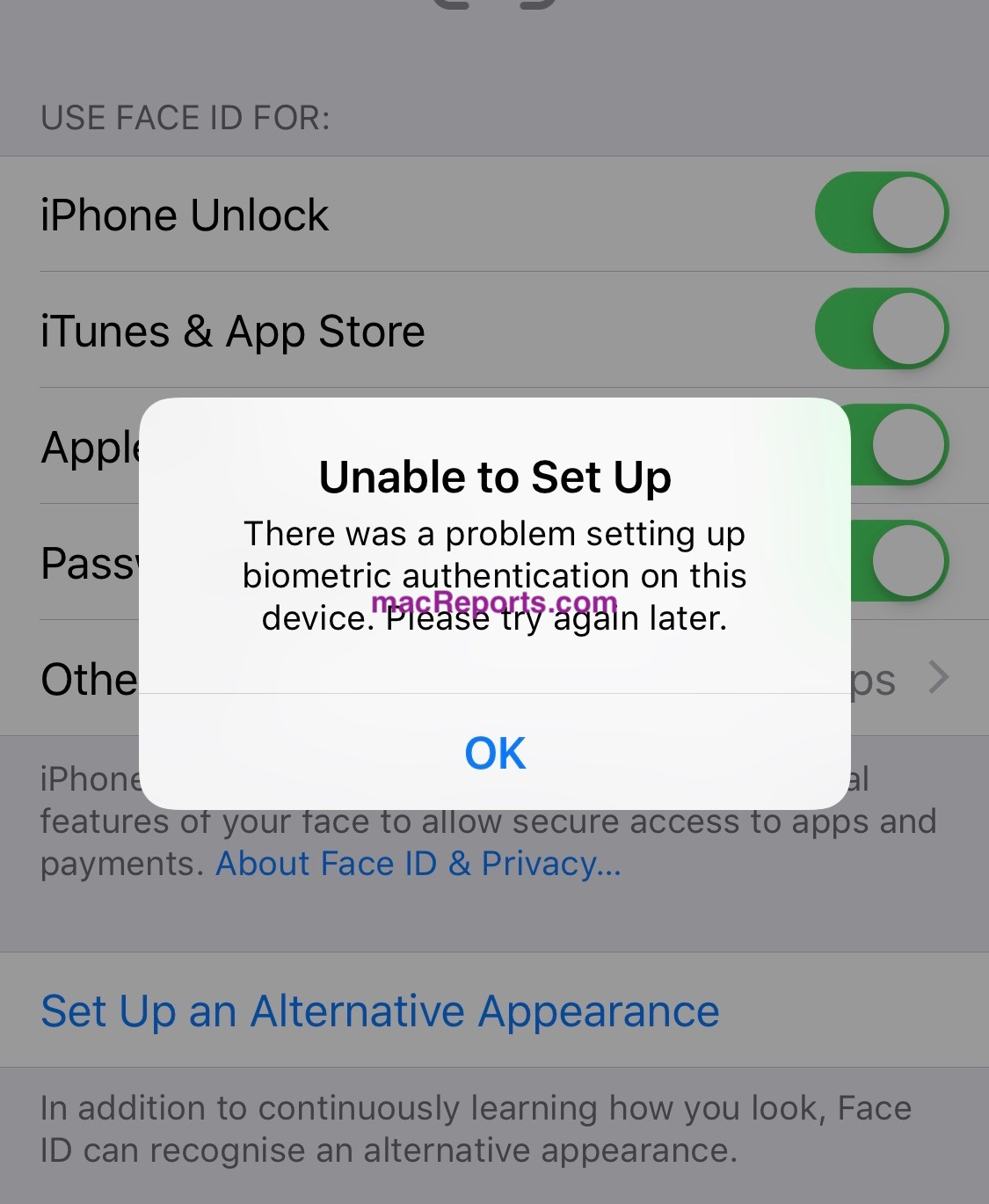 Face ID Unable To Set Up, Biometric Authentication Error