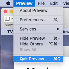 Quit Preview