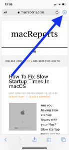 Safari Download arrow