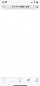 Safari blank page