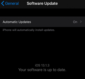iOS software update on iPhone