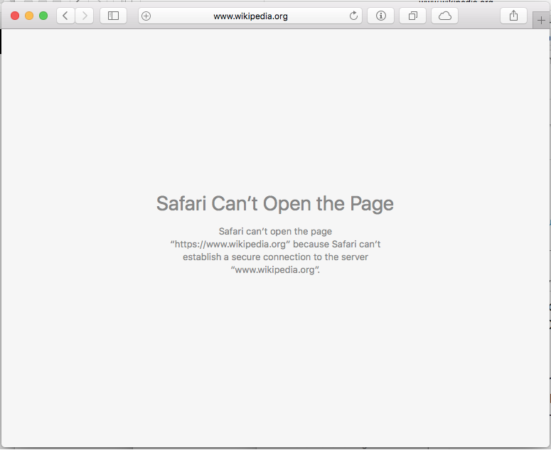Safari can't establish a secure connection to the server error