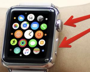Apple Watch Screenshots Take