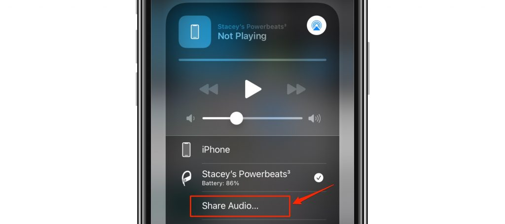 share audio in menu